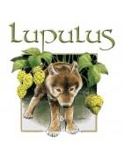 Lupulus