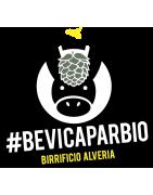 Vendita birre Alveria| shop online, prezzi e offerte | birreadomicilio.it